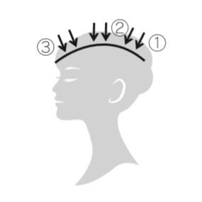 エレクトロン エブリワン デンキバリブラシ(電気バリブラシ) 頭皮 使用方法1 頭頂部からスタート