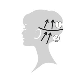 エレクトロン エブリワン デンキバリブラシ(電気バリブラシ) 頭皮 使用方法4 後頭部